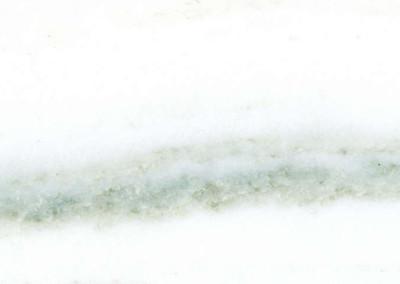 Cippolino